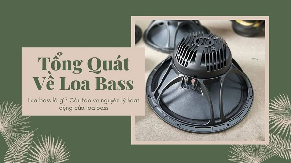 loa-bass-la-gi-cau-tao-ra-sao-va-nguyen-li-hoat-dong-cua-loa-bass